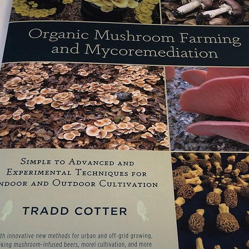 Organic Mushroom Farming & Mycoremediation