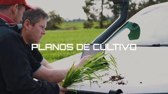 Video de apresentação da Decipher Brasil