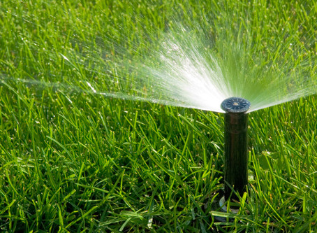 Water Conservation Through Proper Irrigation Practices