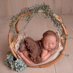 Babyfoto in der wippe
