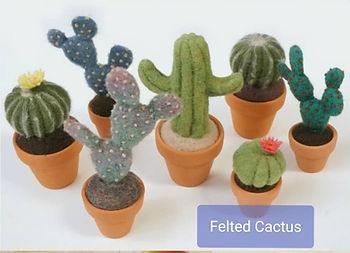 felted cactus.jpg
