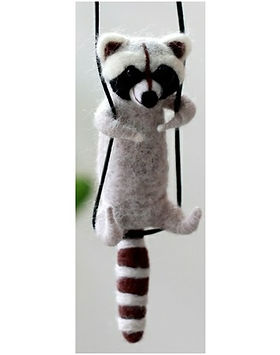 raccoon pic.jpg