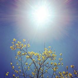 Reiki Benefits your Spirit & Soul