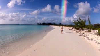 Let the Rainbow Flow Through You
