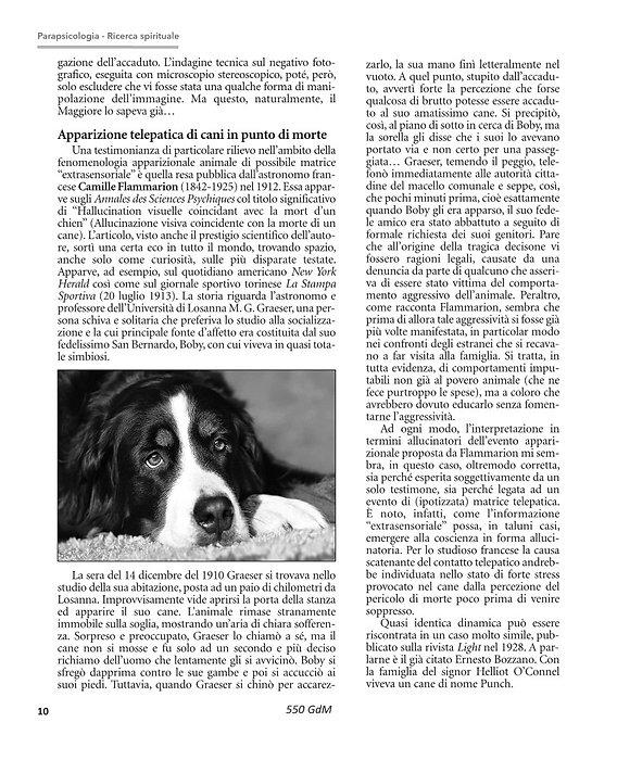 GdM550 articoli Dinicastro e Jones-Hunt[