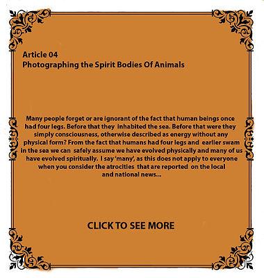 Photographing the Spirit Bodies of Anima