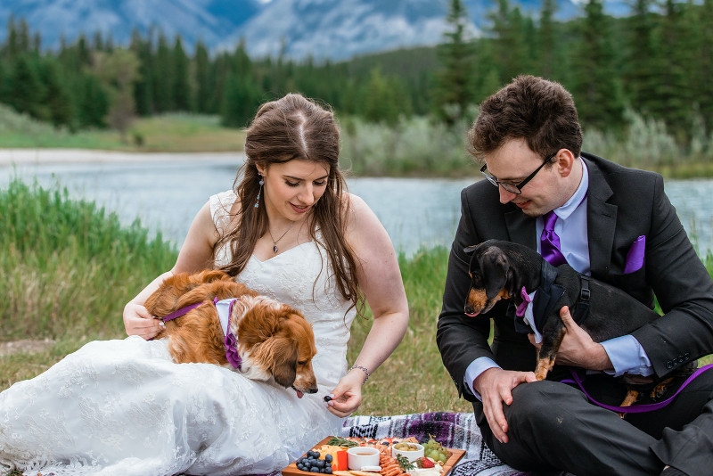 Mountain Picnic Wedding Elopement with their dogs