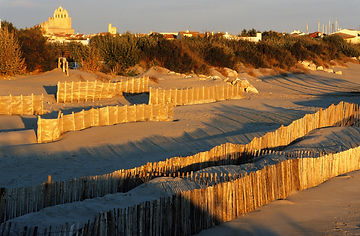 GRAU du ROI_hiver plage-jpeg.jpg