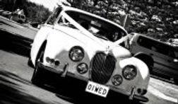 Old Jaguar car