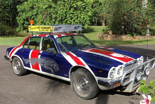 The vintage Jaguar Bash car