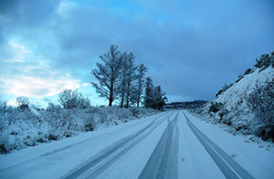 drive through the snow!