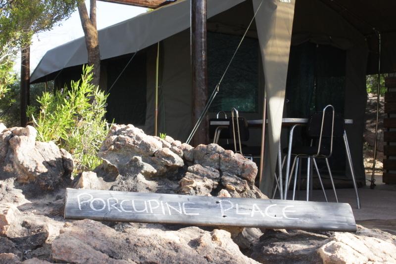 Porcupine Place