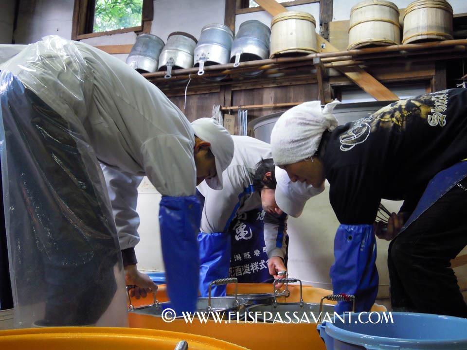 BreweryTour2010_20100120_075.jpg
