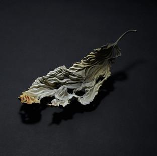 落葉 - 残り火