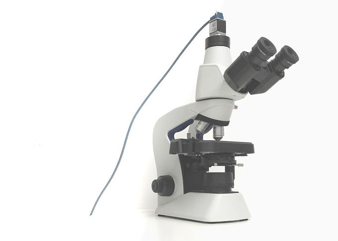 microscope upgrade to manual slide scanner