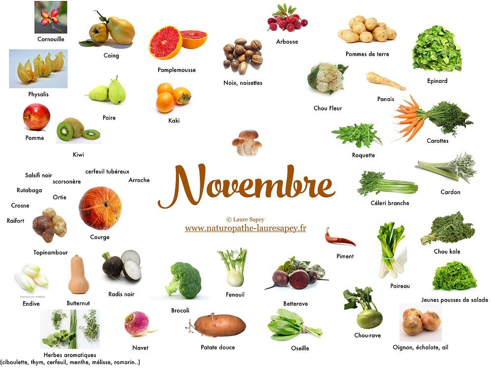 Laure Sapey - Naturopathe Lyon Vileurbanne | Fruits et Légumes de saison du mois de novembre