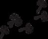 vectorielle-pissenlit-dandelion-335222__
