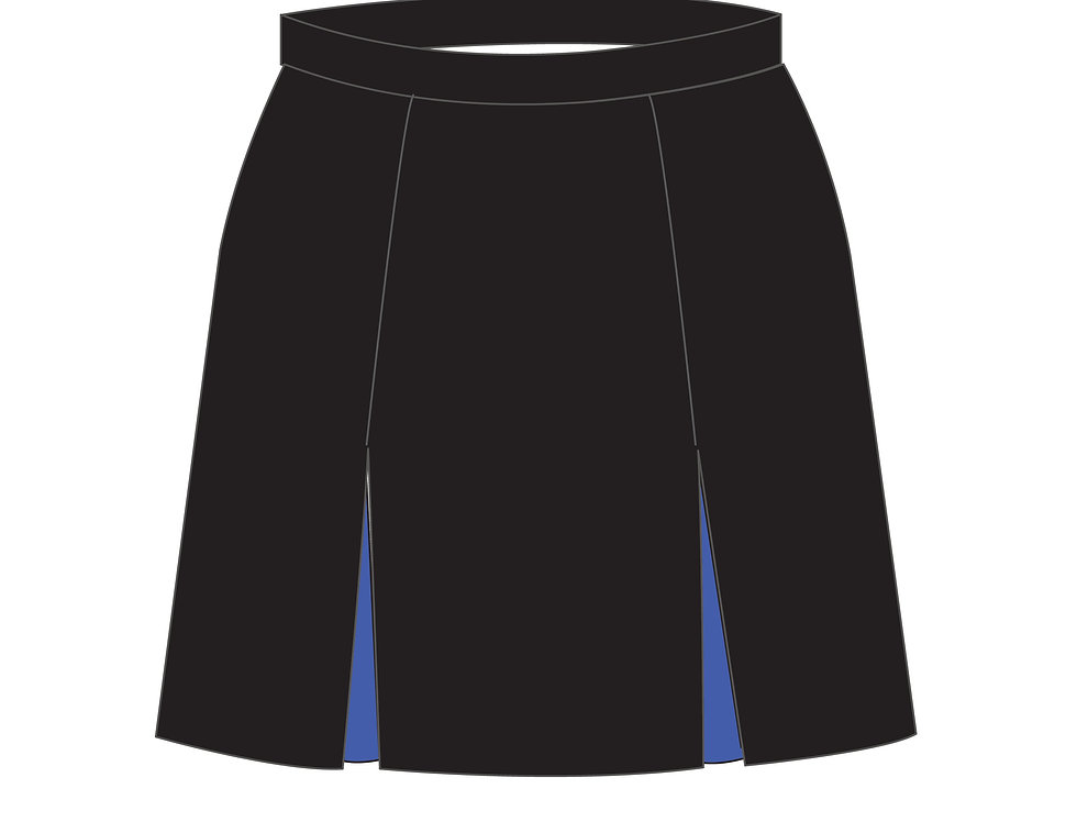 166388 * Skirt Takashiro Chidori school uniform.