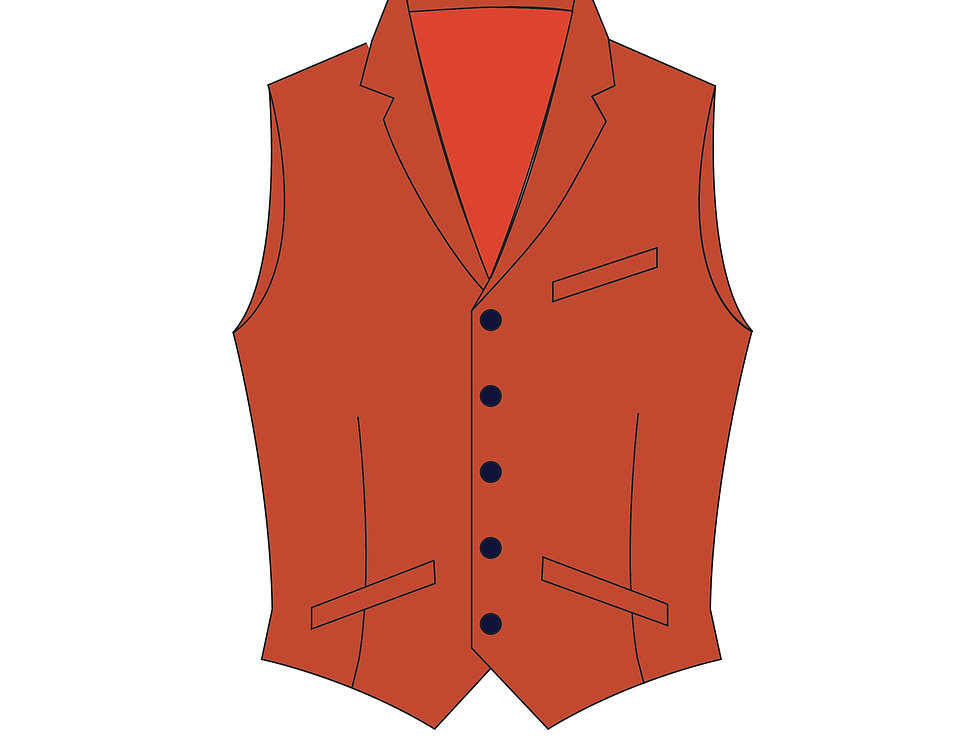 166378 * Crossplay ladies vest Apollo Justice.