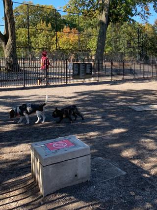Maria Hernandez Park Dog Run