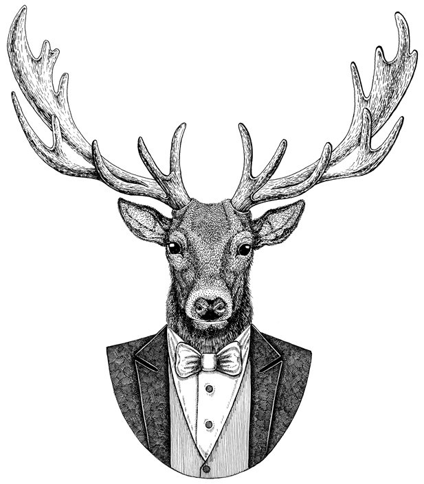 stag in eveneing wear