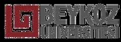 beykoz-üniversitesi-iletişim-istanbul.pn