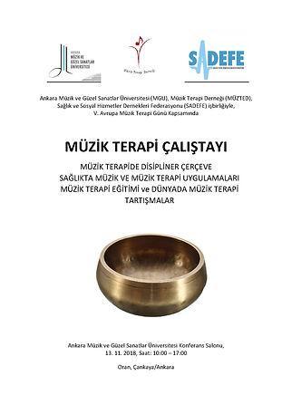 alper maral_MGU_muzik terapi  calistayi_