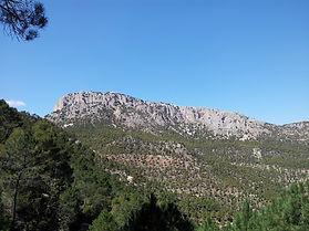 SIERRA_ESPUÑA_Portada_(Pixabay).jpg