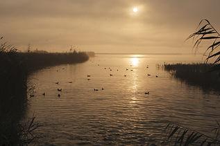 Sunrise at delta del Ebro.jpg