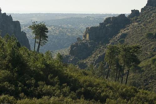 VitaminBox La Jara y Montes de Toledo