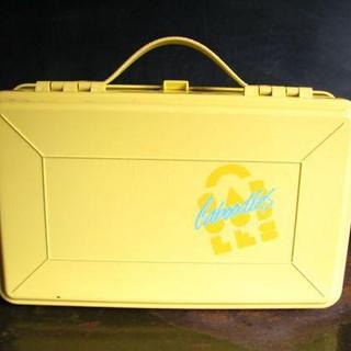 bright yellow makeupbag.jpg