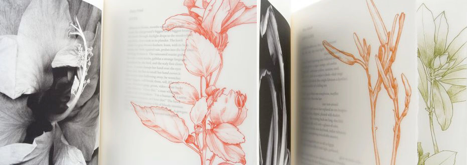 book of printed poetry with floral illustrations