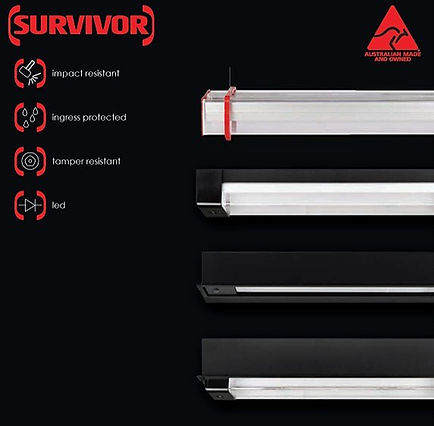 Survivor Products_edited.jpg
