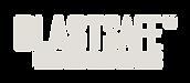 Blastsafe logo white transp web.png