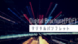 Digital Bouchers(PDF).png