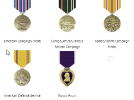 Adding Medals to TWS Fallen Profiles