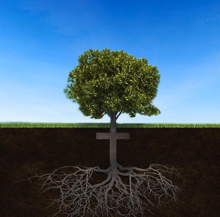 Tree Cross.jpg