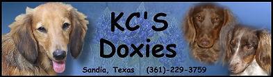KCSbanner1.jpg