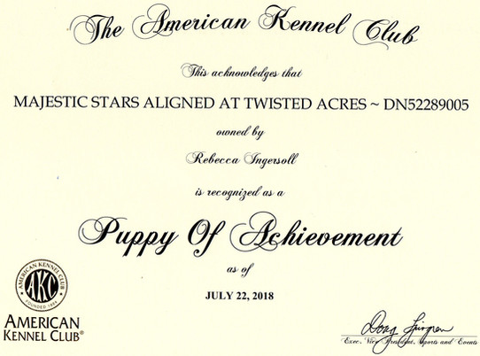 Sirius Puppy of Acheivement certificate0