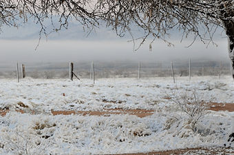 Winter view at Twisted Acres Ranch.