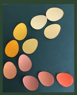 exercise de couleurs.jpg