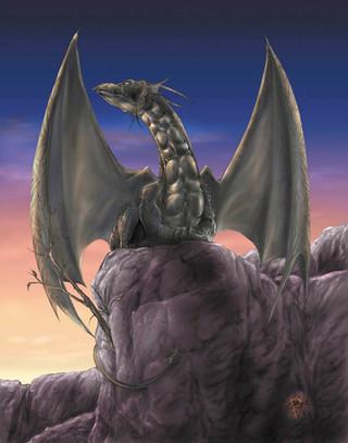 Seeking Dragon.jpg