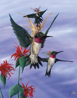 Hummingbird Squadron.jpg