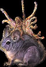 Chinchila Fairy leader-transSM.png