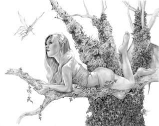 Ivys Tree.jpg