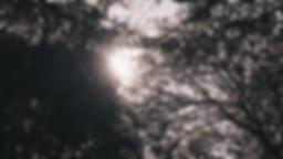 post.00_01_16_10.Still022.png