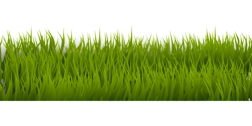 background-2029768_960_720.png