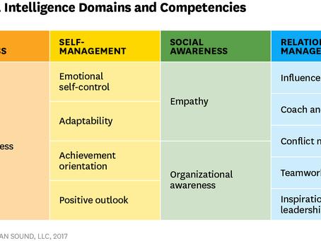 Emotional Intelligence - sixteen traits and 12 domains.