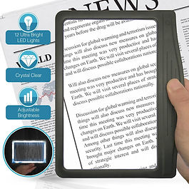 Page magnifier with light
