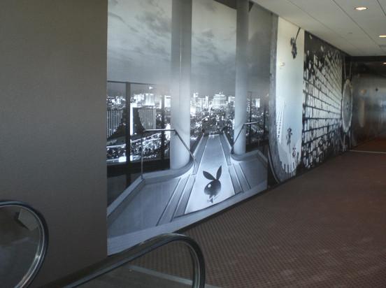 SkyTube Corridor Walll Graphic